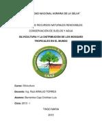 monografia de silvicultura Nº 1