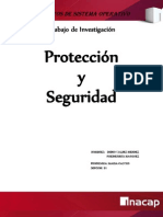 Proteccion Y Seguridad