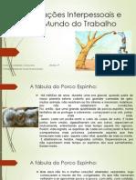 Relações Interpessoais e o Mundo do Trabalho - ECO AULA 1.ppt
