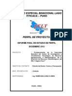 Informe Final Diseno Costos y Presupuestos Pip