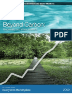 Booklet_BeyondCarbonBiodiversityAndWater.pdf