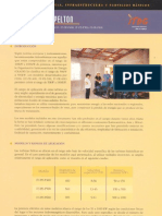 miniturbinaspelton.pdf
