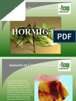 Hormigas[1]