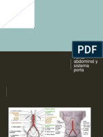 Aorta Abdominal y Sistema Porta