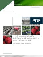 Red de La Comercializacion de La Fresa Mexico