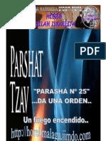 TZAV PARASHA 25