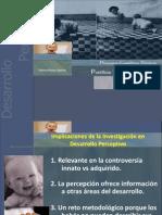 7desarrolloperceptivo-12917796011056-phpapp01