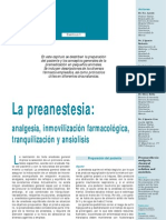 Manual Anestesia