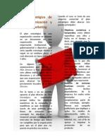 Plan Estrategico de una Organización y Plan de Marketing