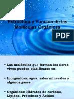 Estructura y Función de las Moléculas Orgánicas
