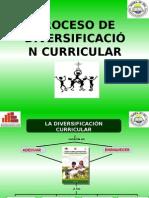 Diversificacion Curricular - Ugel 04