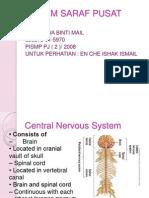 wawa- sistem saraf pusat.ppt