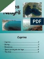 Cantari cu acorduri crestine pdf free online