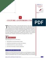 Lesson 1_ Culture_ an Introduction (54 KB)
