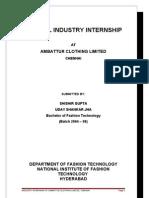 Apparel Internship Document
