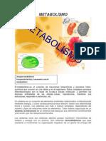 METABOLISMO(1)