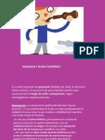 gaseosasycidofosfrico-120506095020-phpapp02