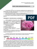 p6.Indicador Natural Ph
