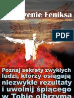 darmowy ebook Odrodzenie Feniksa