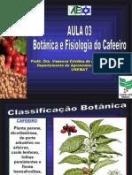 Aula 03 Fisiologia Do Cafeeiro