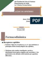 Slide Opiodes