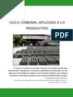 1CICLOCOMUNALAPLICADO2011LISTO11-08