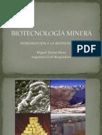 BIOTECNOLOGÍA MINERA