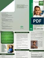 Plazos Escolarizacion.triptico Informativo 2013-14