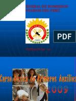 cursobasicodeprimerosauxilios20091-110713143102-phpapp02.pdf