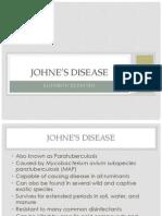 Johnes Disease