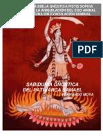 3 didacticas gnosticas
