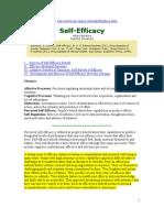 Self Efficacy- Bandura