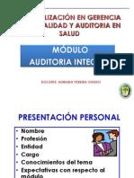 Auditoria Integral 2013 -1