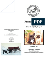 New French Bulldogs 101