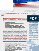 Copia de Executive Protection