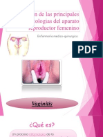 Patologías del aparato reproductor femanino  (1)