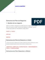 Estructura de Plan de Negocios 1