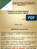2012 - DOENÇAS DO ABACAXIZEIRO
