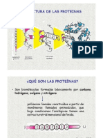 3.Amino Proteinas