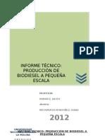INFORME TÉCNICO- biodiesel