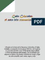 FUENTES HIDRICAS CAÑO CRISTALES