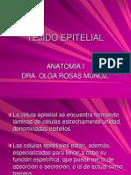 02_Apoyo_Tejido_epiteliar