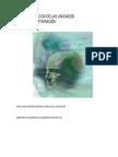 Alejandro La_Organizacion_de_las_Unidades.pdf