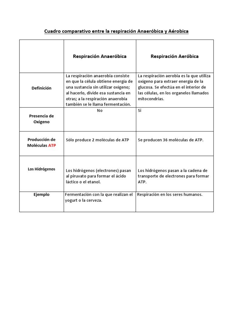 Ecuacion de la fotosintesis y respiracion celular 23