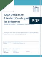 TAyA Decisiones Introducción a la gestión de los Prestamos