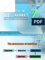 Nutrition in organisms