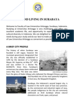 Arriving and Living in Surabaya