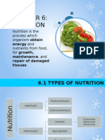 Chapter 6 - Nutrition (Part 1)