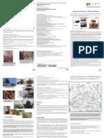Praga Palmeiras Folheto Informativo Jardim Botanico