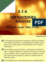 sig elementos basicos.pdf